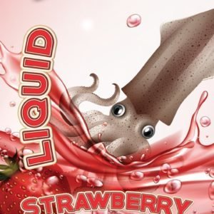 Bivy Bait Strawberry-Squid | Liquid 300ml bivy-bait-strawberry-squid-liquid-300ml